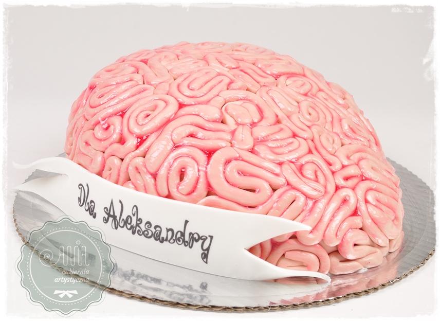 Tort Mózg - zdjęcie 1